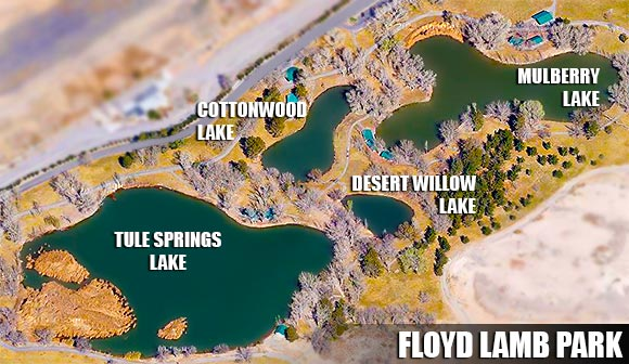 Las vegas fishing floyd lamb park for Nevada game and fish