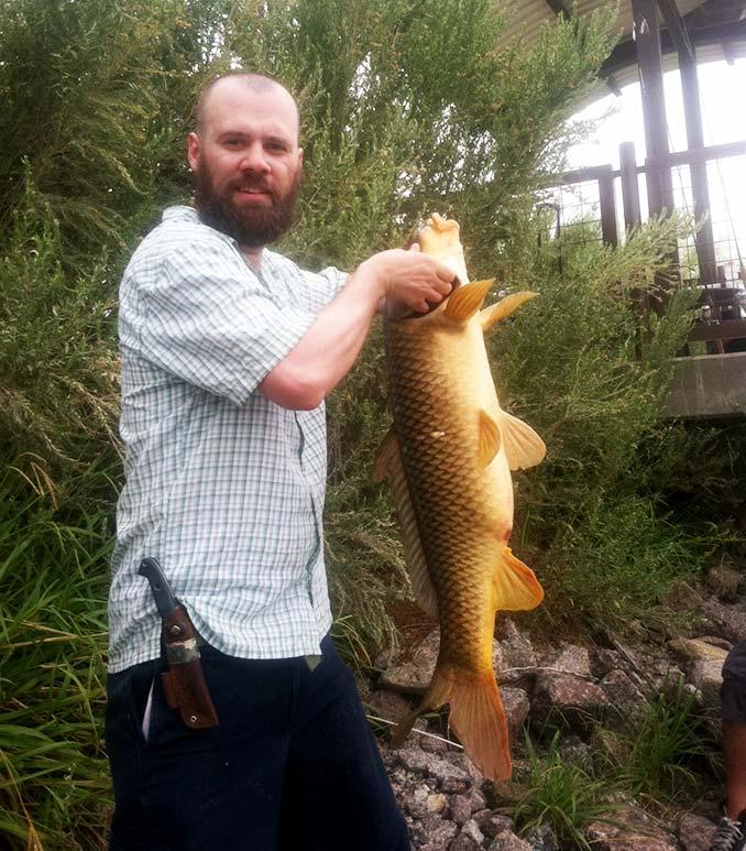 Giant Carp caught on the Colorado River in Laughlin, Nevada