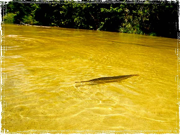Garin Clear Water River