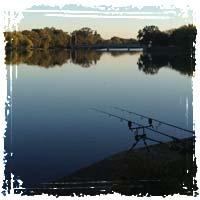Carp Fishing Poles