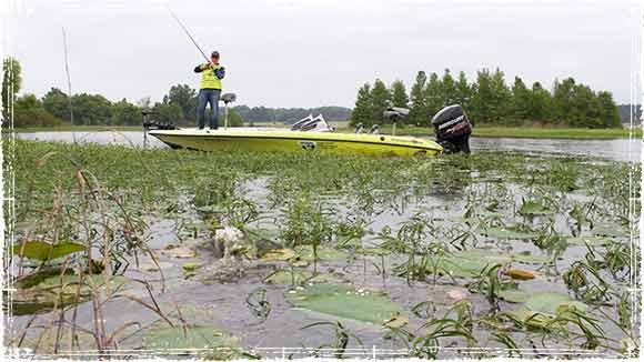 Scott Canterbury Fishing Thich Cover