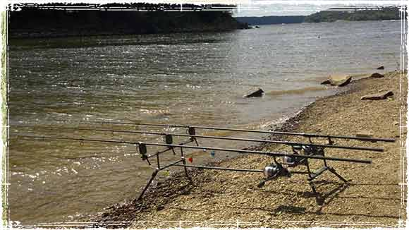 Beginner carp fishing it s all about the right gear for Beginner fishing gear