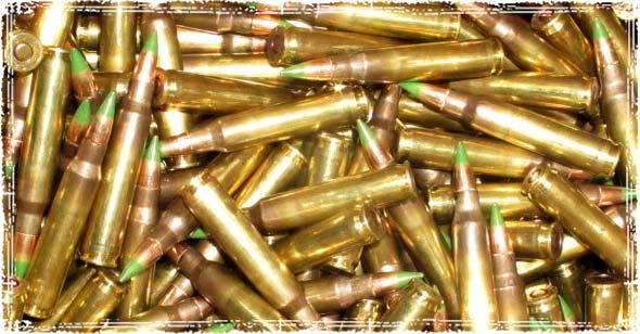 M855 5.56 Ammo