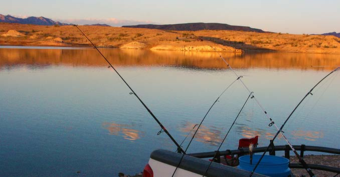 Fishing tips organizing your tackle box for Nevada fish and game