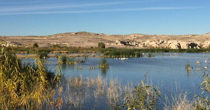 Fishing Lake Mohave in Nevada