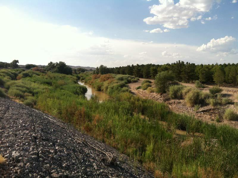 Muddy River near Overton